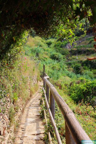 Cinque Terre Wanderweg
