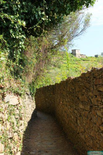 Cinque Terre Wanderweg Richtung Corniglia