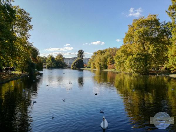 Teich im St. James Park in der Herbstsonne
