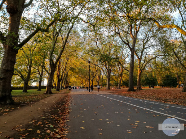 Herbst im Hyde Park