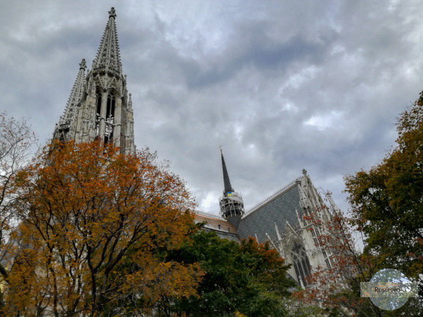 Votivkirche mit Bäumen