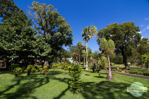 Botanischer Garten Kingstown auf St. Vincent