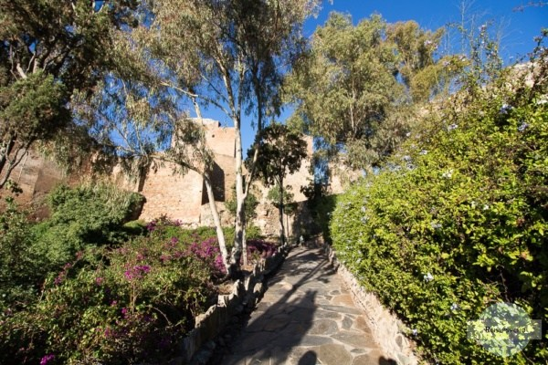 Weg zum Castillo Gibralfaro