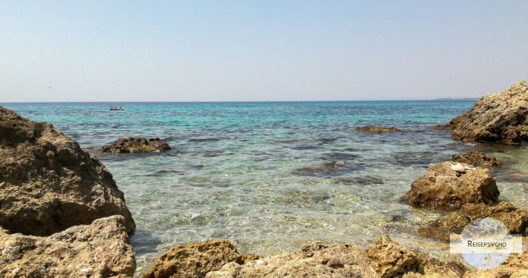 Von tausenden Fischen umgeben – unser Reisemoment 2017