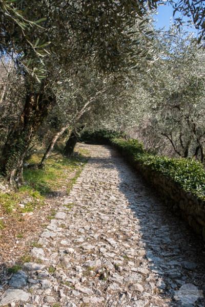 Durch das Valle di Santa Lucia hinauf nach Nago