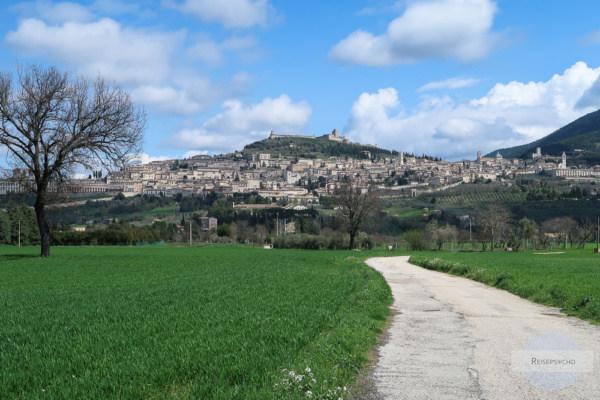 Assisi von unten