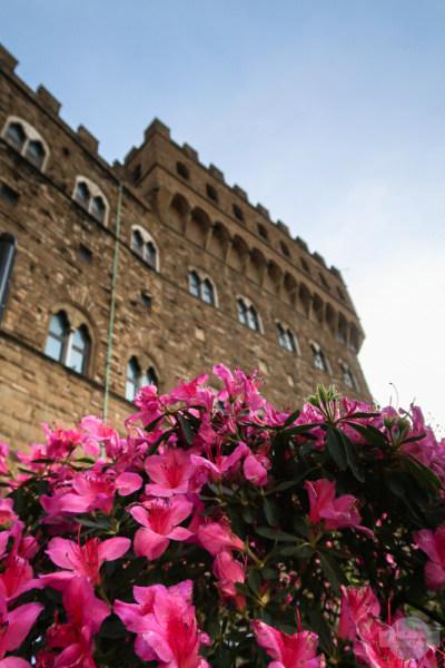 Blumen vor dem Palazzo Vecchio in Florenz