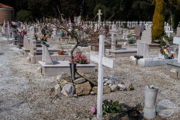 Baum statt Kreuz am Friedhof