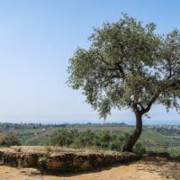 Italienische Reise – ein Abenteuer auf Goethes Spuren