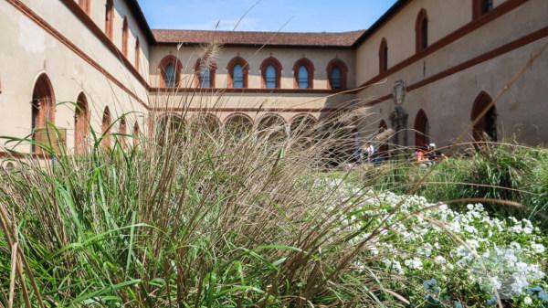 Gras vor Palazzo