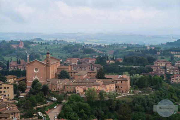 Blick in die Toskana / Reise nach Siena