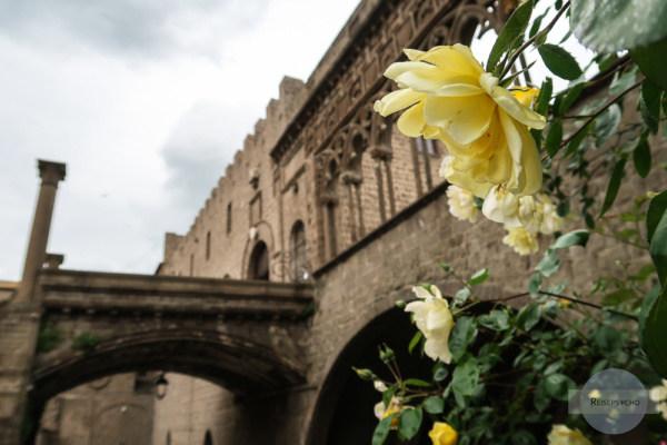 Viterbo Papst Palast
