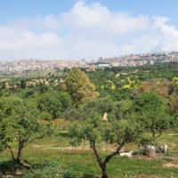 Agrigent und das Tal der Tempel - auf Zeitreise in Sizilien