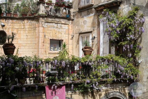 bewachsener Balkon in Neapel im Palazzo Venezia