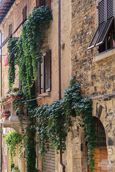mit Efeu bewachsenes Haus in Arezzo