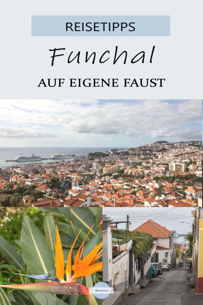 Funchal auf Madeira - Sehenswürdigkeiten auf eigene Faust entdecken #funchal #madeira #aufeigenefaust #sehenswürdigkeiten #kreuzfahrt #reisen #tipps