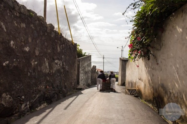 Korbschlitten fahren in Funchal