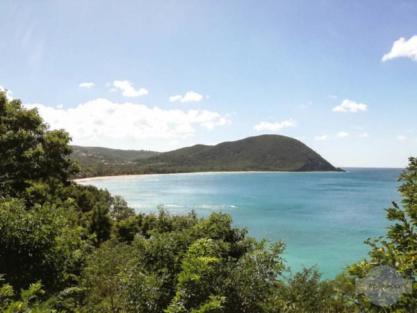 Blick auf den langen Strand Grande Anse in Deshaies