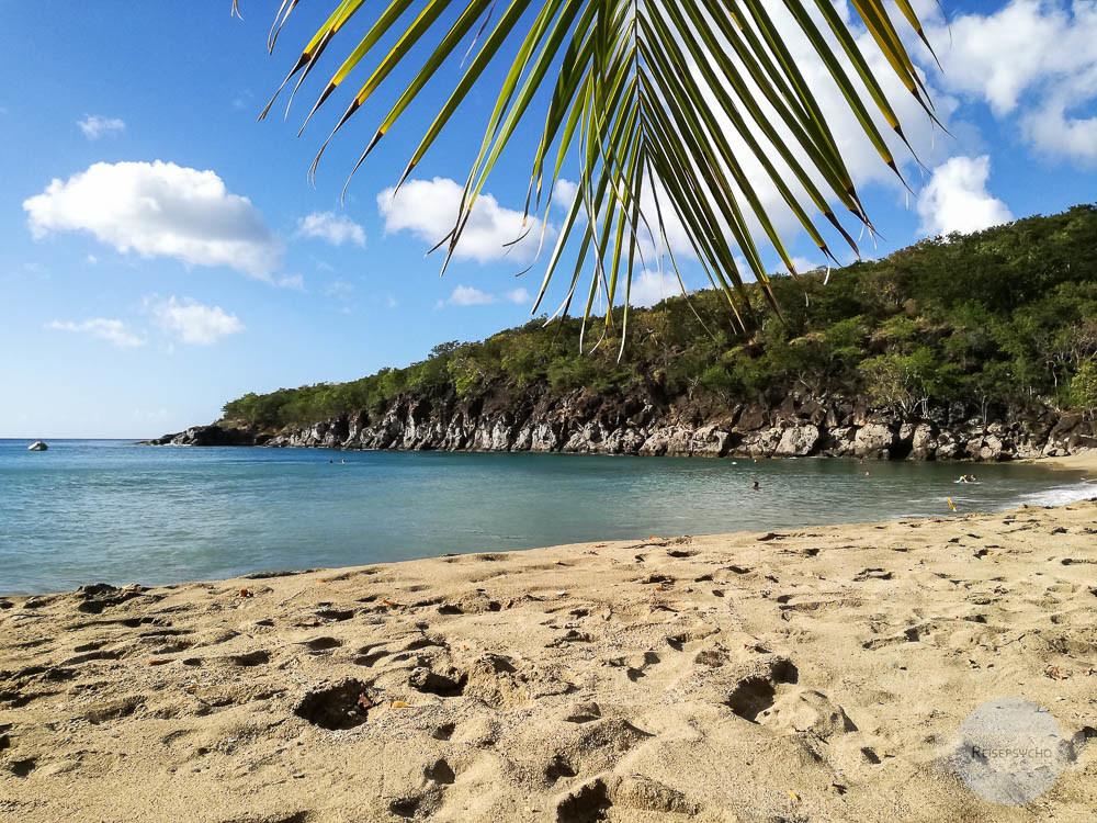 Mein Lieblingsstrand auf Guadeloupe: Petit Anse südlich von Deshaies