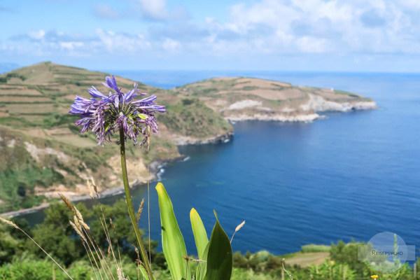 Küste auf den Azoren / schönstes Foto von Sao Miguel