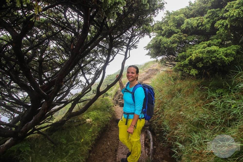 Wandern auf den Pico da Vara auf den Azoren