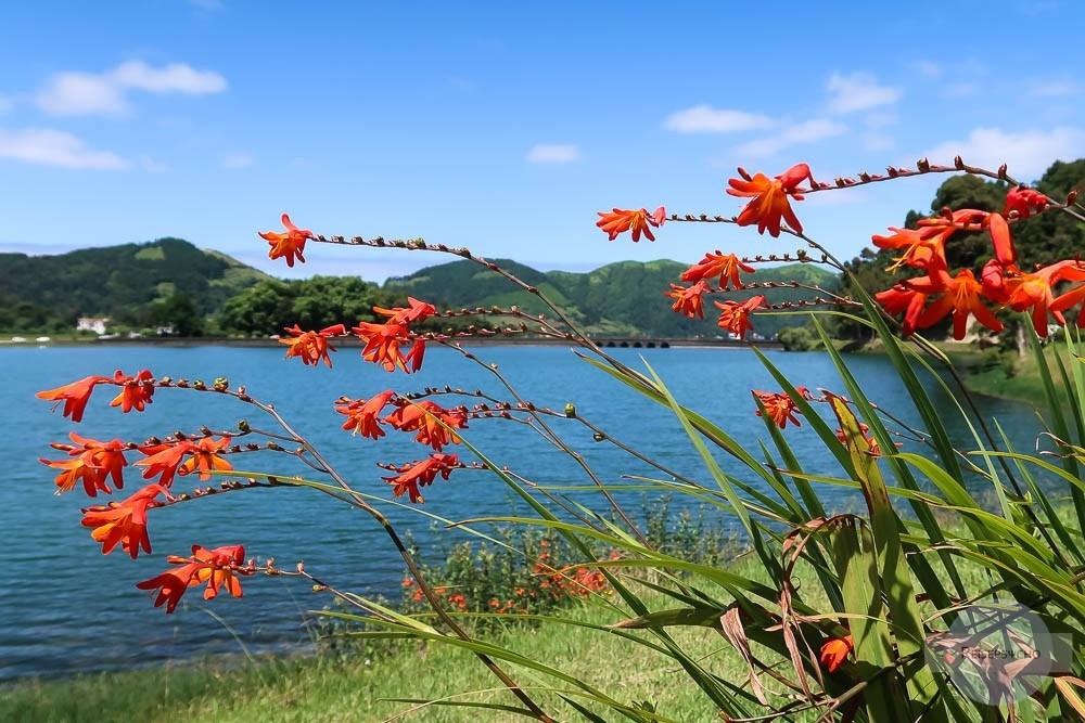 Beste Reisezeit für die Azoren – Sao Miguel im Sommer