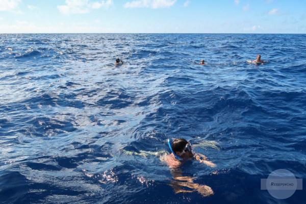 Definschwimmen Azoren
