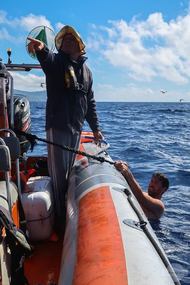 Definschwimmen Atlantik