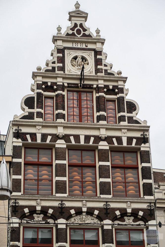 Käse in Auslage in Amsterdam