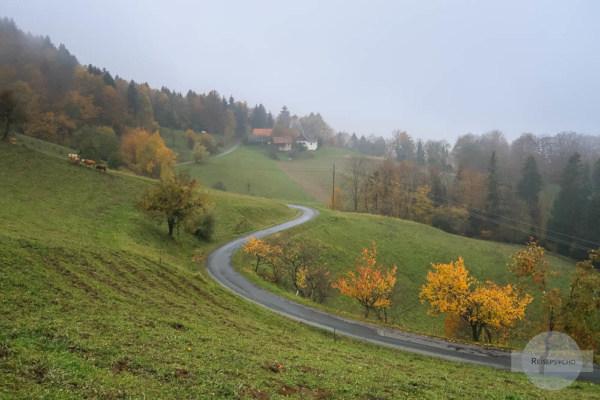 Südsteiermark im Regen