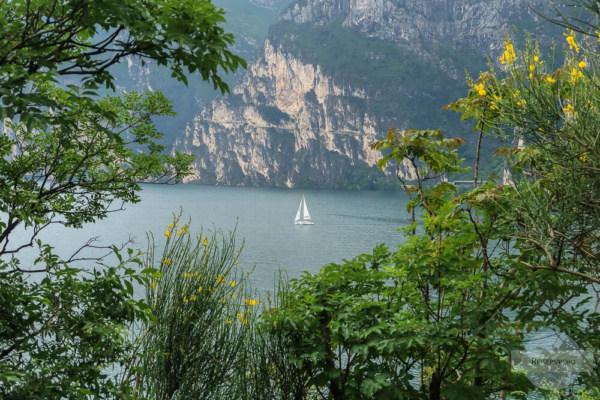 Gardasee Norden - Städte, Aktivitäten und Tipps / Segelboot am Gardasee
