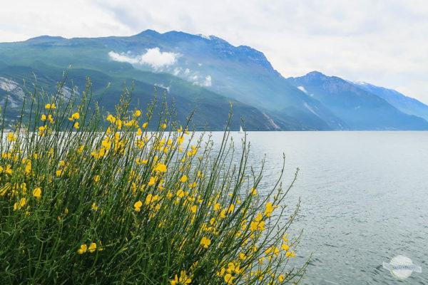 Das Monte Baldo Massiv erhebt sich auf der Ostseite des Gardasees