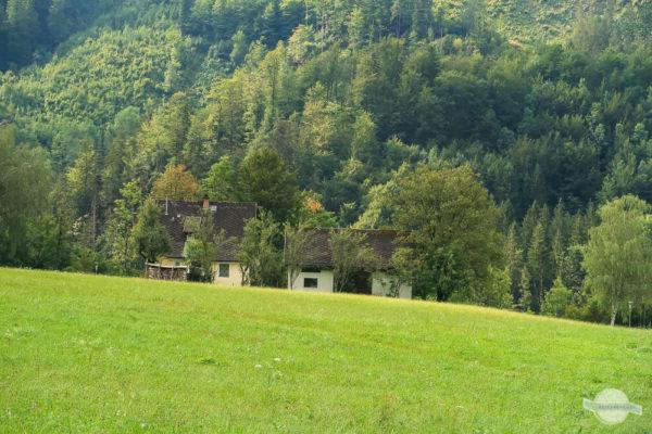 Naturpark Steirische Eisenwurzen grüne Wiese und Bauernhaus