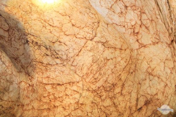 Eisenwurzen in der Kraushöhle im Gesäuse