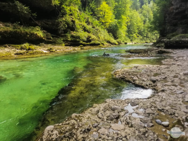Smaragdgrünes klares Wasser in der Salza im Gesäuse