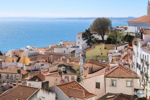 Die Alfama bei einem Lissabon Zwischenstop erkunden und über die Dächer blicken