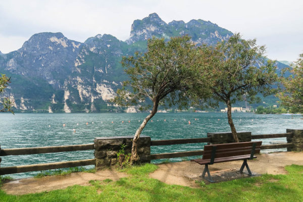 Bank und Bäume vor Gardasee