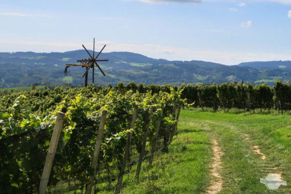 Klapotetz und Weingarten in der Südsteiermark