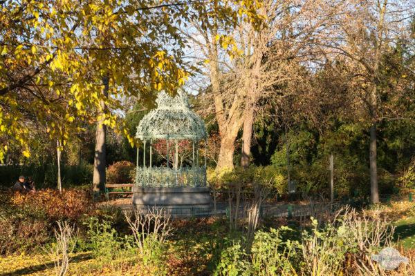 Herbst in Graz mit bunten Blättern
