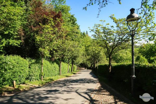 Weg auf den Schlossberg in Graz