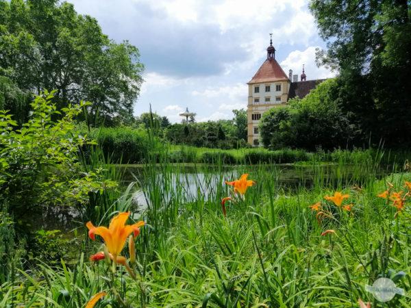 Blüten vorm Schloss Eggenberg
