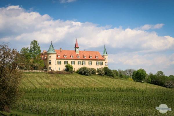 Schloss St. Martin mit Weinbergen davor