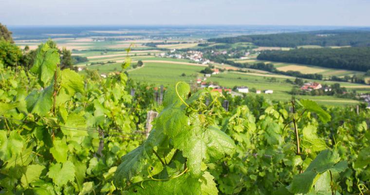 Der Eisenberg – ein südburgenländisches Weinidyll