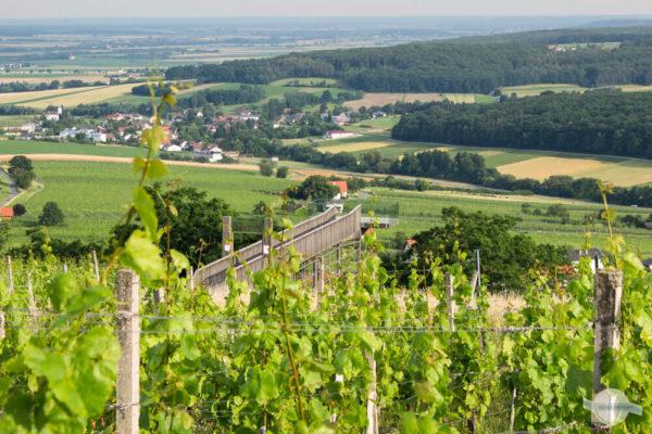 Die Aussichtsplattform am Eisenberg