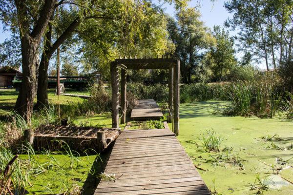 Schwimmende Brücke in Teich