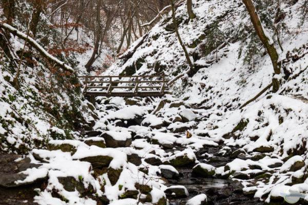 Rettenbachklamm im Winter