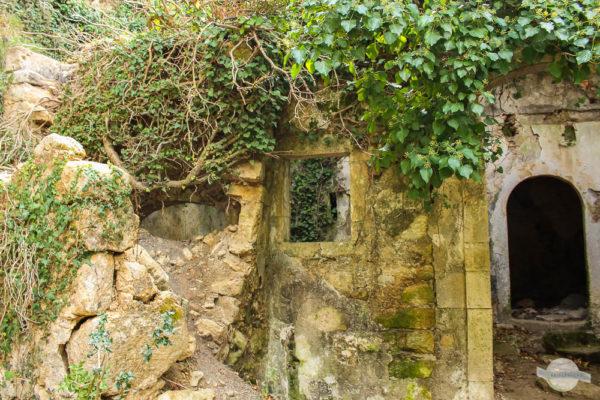 verwittere alte Mühle mit Efeu auf Kreta