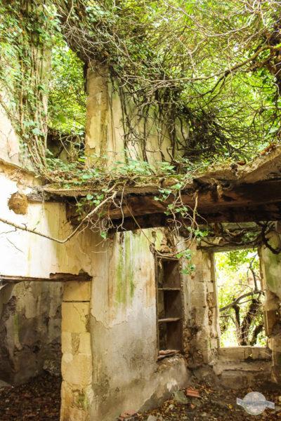 Alte Mühle auf Kreta