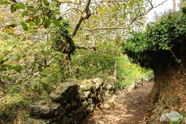 Der Wanderweg in der Myli-Schlucht