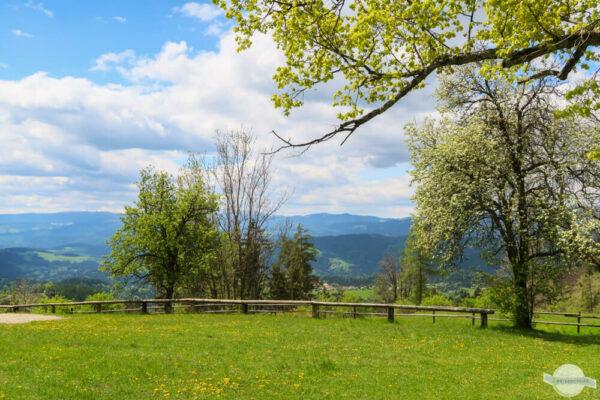 Plesch im Grazer Bergland